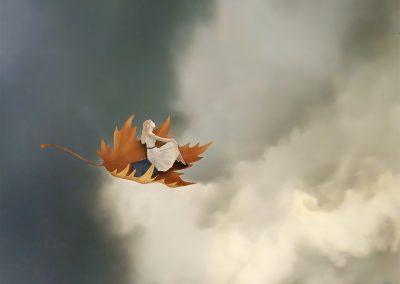 Fly high…!
